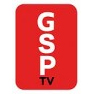 george-neagu_gsptv-logo